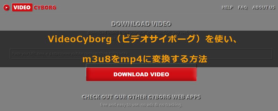 Videocyborg